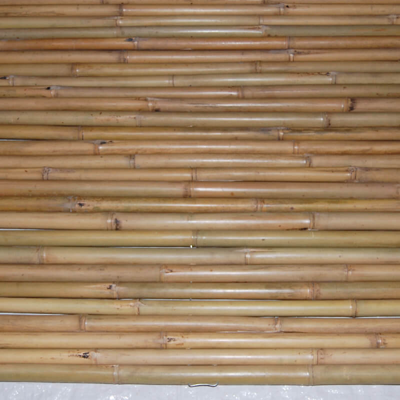 Bamboo Fences